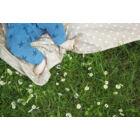 Bézs csillagos 3 az 1-ben útravaló takaró, Little Stars